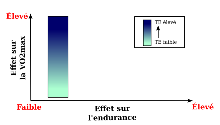 VO2 endurance training effect