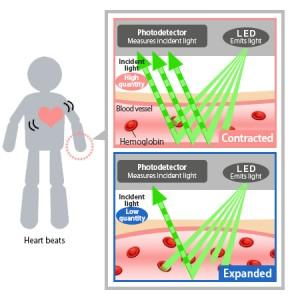 Comment fonctionne capteur cardio optique