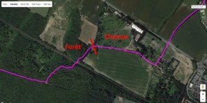 Trace GPS arbres