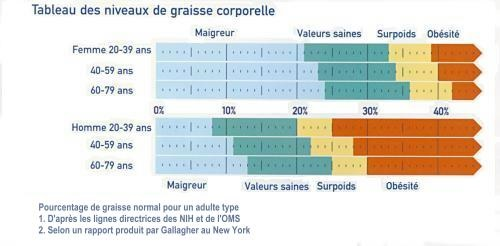 Taux de graisse corporelle normal