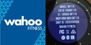 Montre GPS Wahoo Elemnt Rival