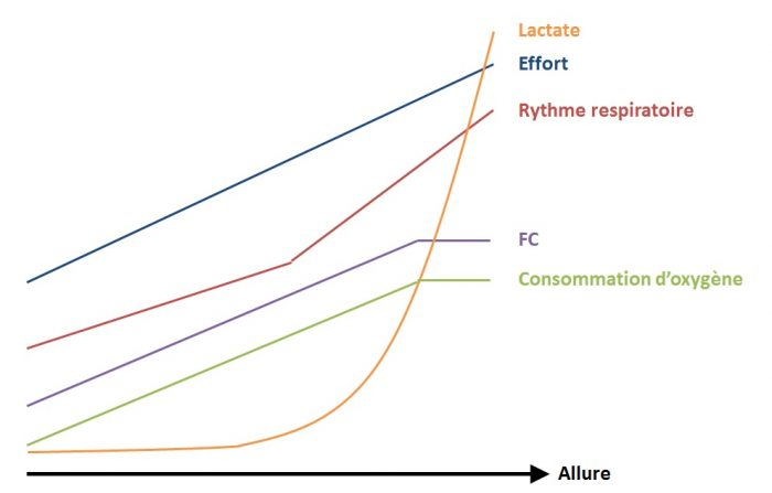 Graphe effort FC