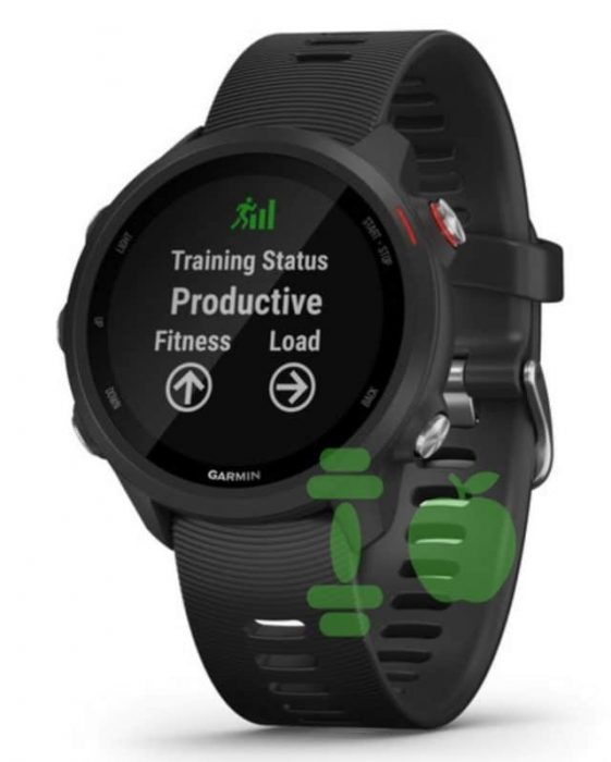 Garmin Forerunner 245 training effect