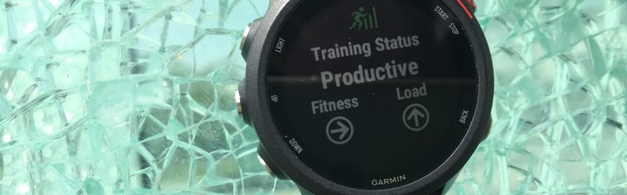 Test Garmin Forerunner 245