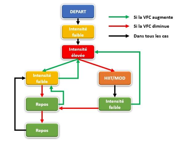 Protocole entrainement VFC