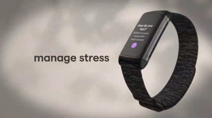 Fitbit Charge 5 stress